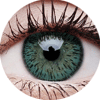 ColourVue Elegance Green Lens