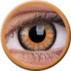 ColourVue Glamour Honey  ColourVUE Glamour lenses create a vibrant colour change and defined black circle for bigger, more glamorous looking eyes.  ColourVue Glamour contact lenses are a combination of the best features from the ColourVue series whic